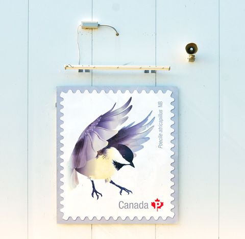 picture of Canada Post  stamp with a chickadee on it
