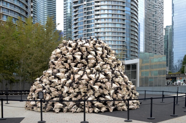 a large pile of buffalo skulls, art installation, with glass and steel condos rising behind,